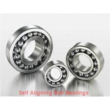 NSK 1307TN  Self Aligning Ball Bearings