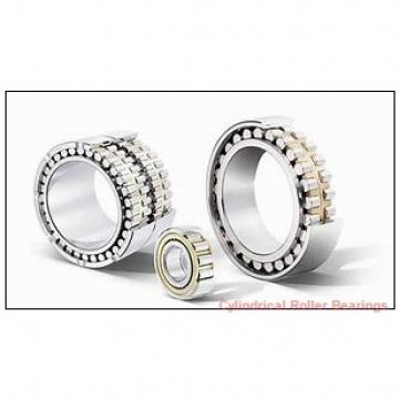 20 mm x 47 mm x 14 mm  FAG NUP204-E-TVP2  Cylindrical Roller Bearings