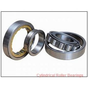 75 mm x 130 mm x 31 mm  FAG NJ2215-E-TVP2  Cylindrical Roller Bearings