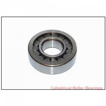 3.15 Inch | 80 Millimeter x 4.921 Inch | 125 Millimeter x 0.866 Inch | 22 Millimeter  NSK NU1016M  Cylindrical Roller Bearings