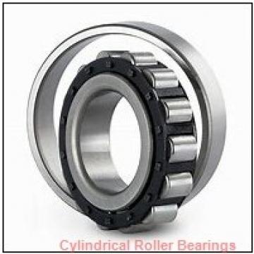 17 mm x 40 mm x 12 mm  FAG NUP203-E-TVP2  Cylindrical Roller Bearings