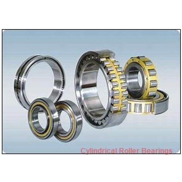FAG NUP205-E-TVP2-C4  Cylindrical Roller Bearings #2 image