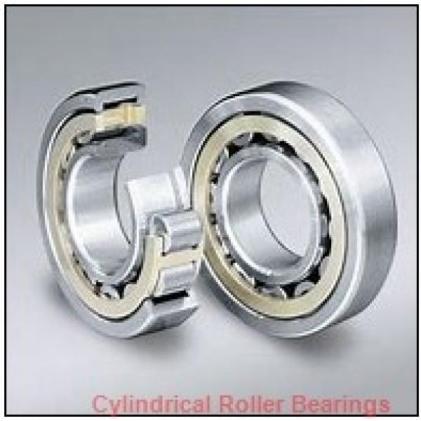 FAG NUP210-E-TVP2-C3  Cylindrical Roller Bearings #1 image