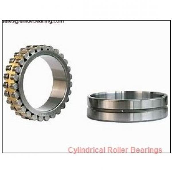 FAG NJ313-E-M1-F1-T51F  Cylindrical Roller Bearings #2 image